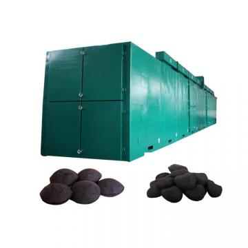 Coconut Peels Mesh Belt Dryer for Foodstuff Industry